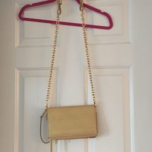 Gold Dagne Dover cross body wallet on a chain